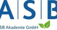 Agiles Business Development Management