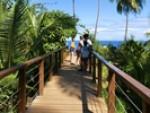 Schüleraustausch Costa Rica: 5 Punkte, wie Alicia den Advent, Weihnachten und Silvester verbracht hat