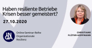 Online-Seminar 27.10.2020 – Haben resiliente Betriebe Krisen besser gemeistert?