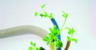 Berufsbegleitende Weiterbildung rund um Energie & Nachhaltigkeit